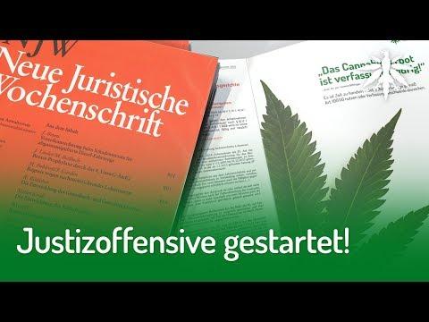 Justizoffensive gestartet   DHV-News #217