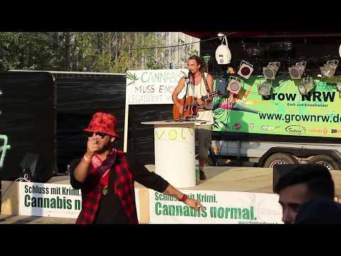 Selassikai live auf dem Hammf e.V. Sommerfest 2017