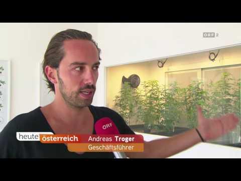 Hanfgarten ist das erfolgreichste Crowdfunding Projekt Österreichs