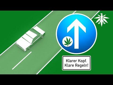 Klarer Kopf. Klare Regeln! Cannabis, Führerschein + Ungerechtigkeit