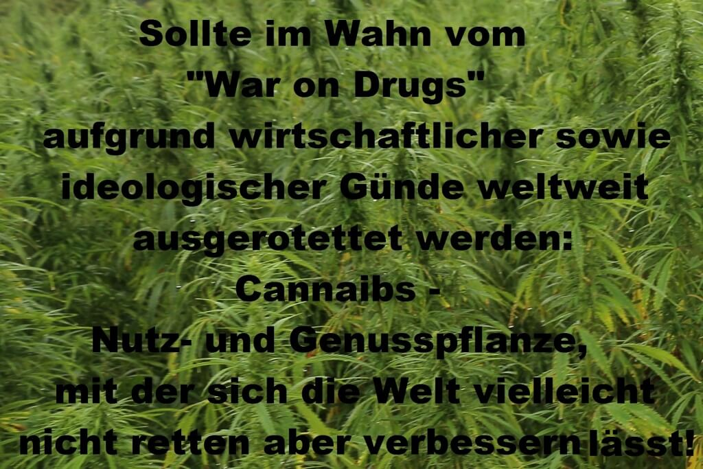 Ein Instrument im War on Drugs: UNODC