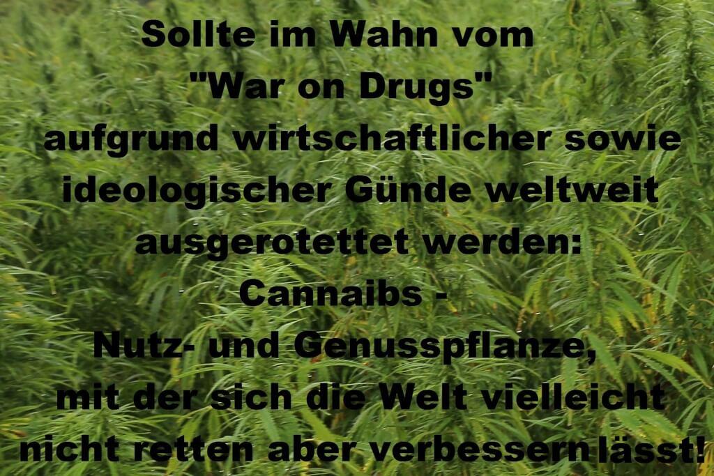 Ein Instrument im War on Drugs: UNODC
