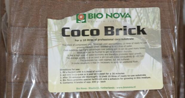 Anbau auf Cocos zum aufquellen