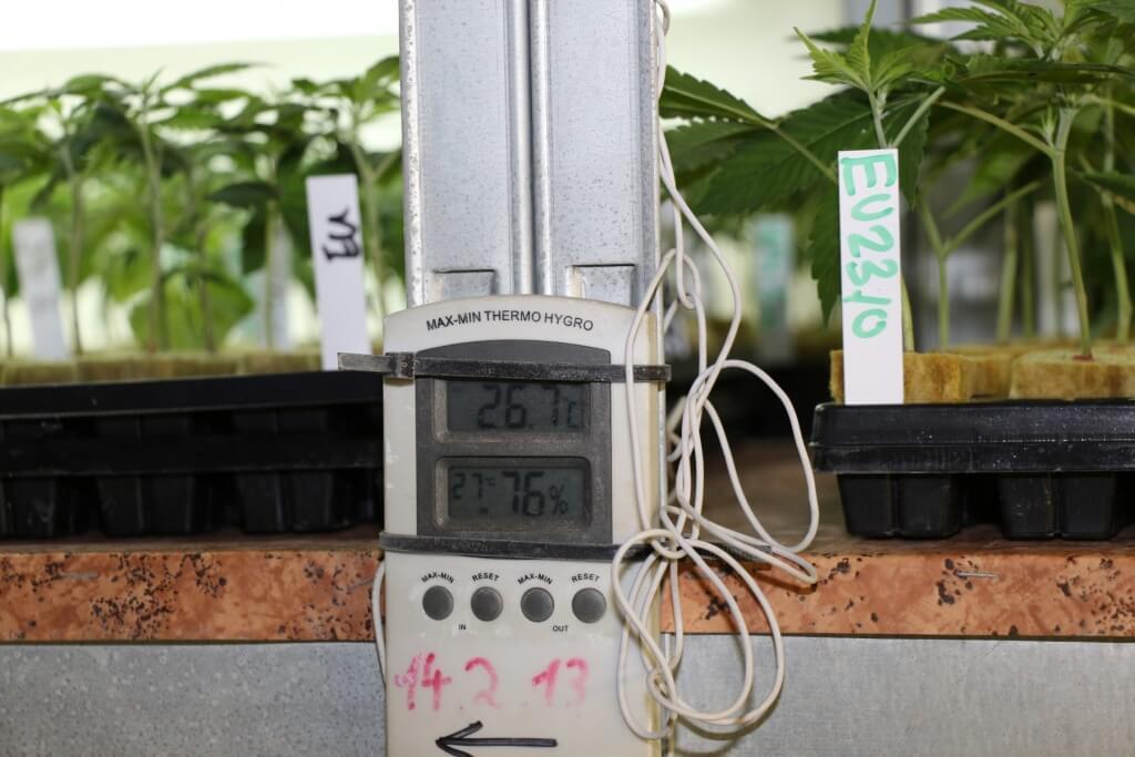 Auf Temperatur- und Luftfeuchtigkeit achten!