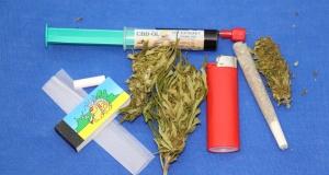 Deutsche Cannabisagentur für bessere Patientenversorgung