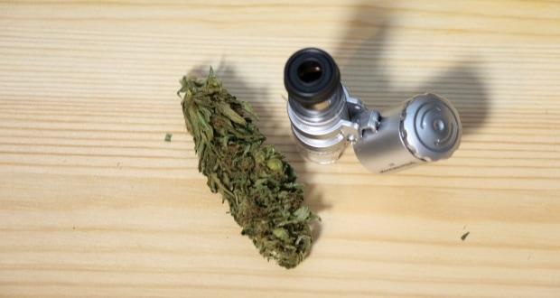 Marihuana online bestellen: Erst prüfen, dann vielleicht rauchen!