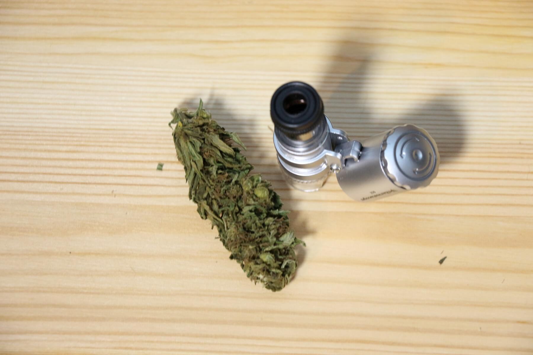 marihuana online bestellen kommt es auch ohne besuch an. Black Bedroom Furniture Sets. Home Design Ideas