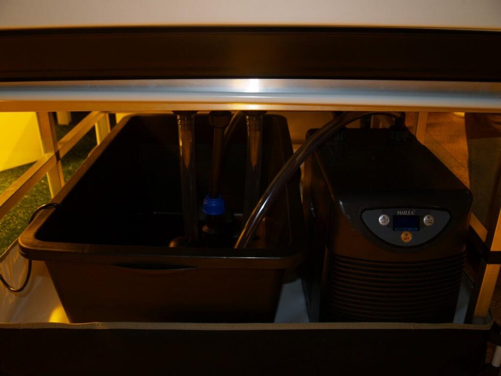 Wasserkühlung für Aeroponische Systeme wichtig