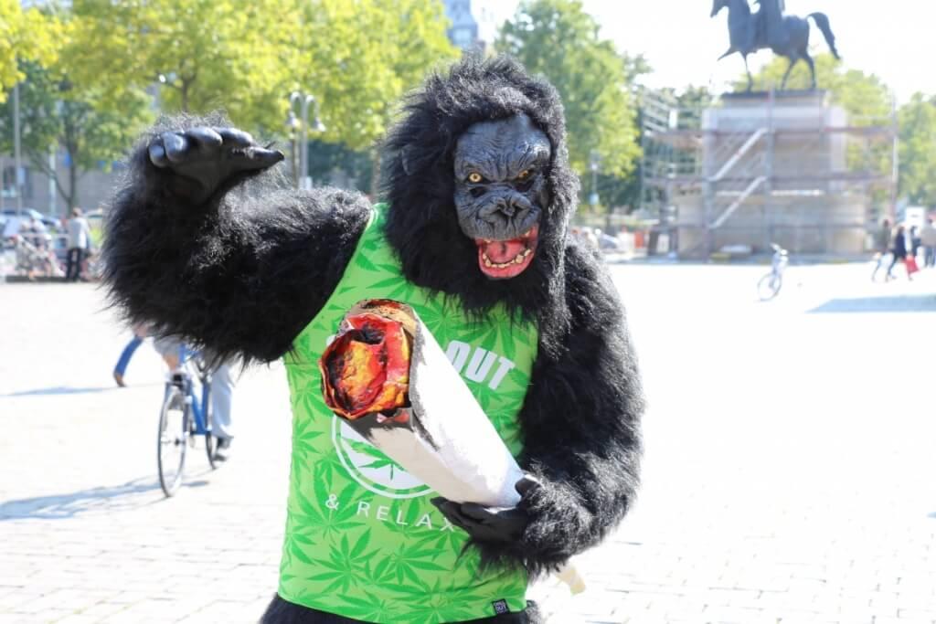 Dank Megajoint zum Affen geworden, ohne dafür saufen zu müssen