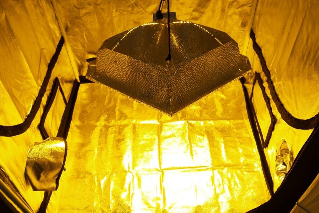 Hoher Stromverbrauch beim Indoor Anbau