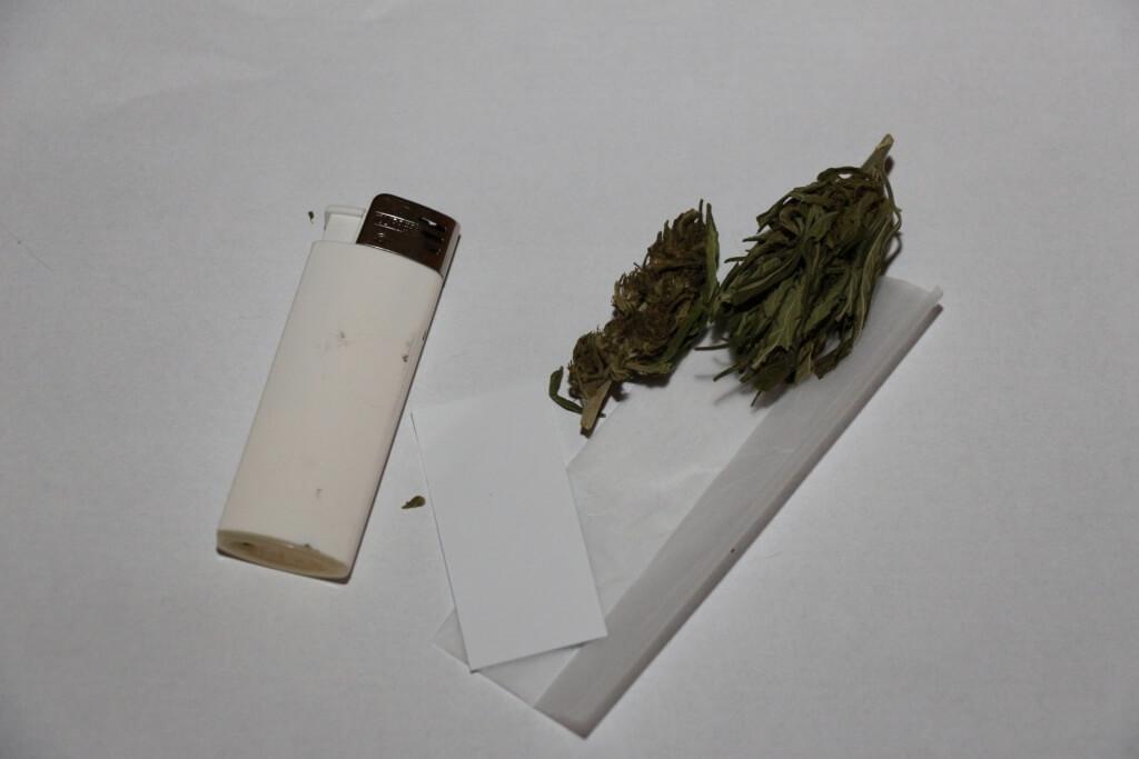 Marihuanablüten erstattungsfähig? Warm nicht einfach selber Marihuana anbauen?
