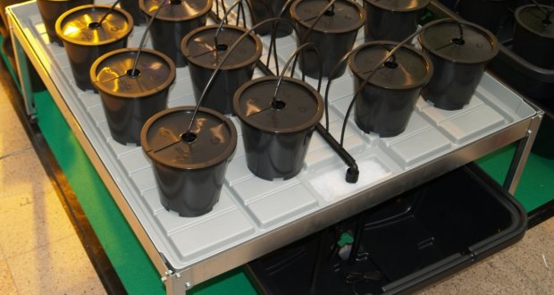 Grow Kompaktsystem mit modularem Aufbau