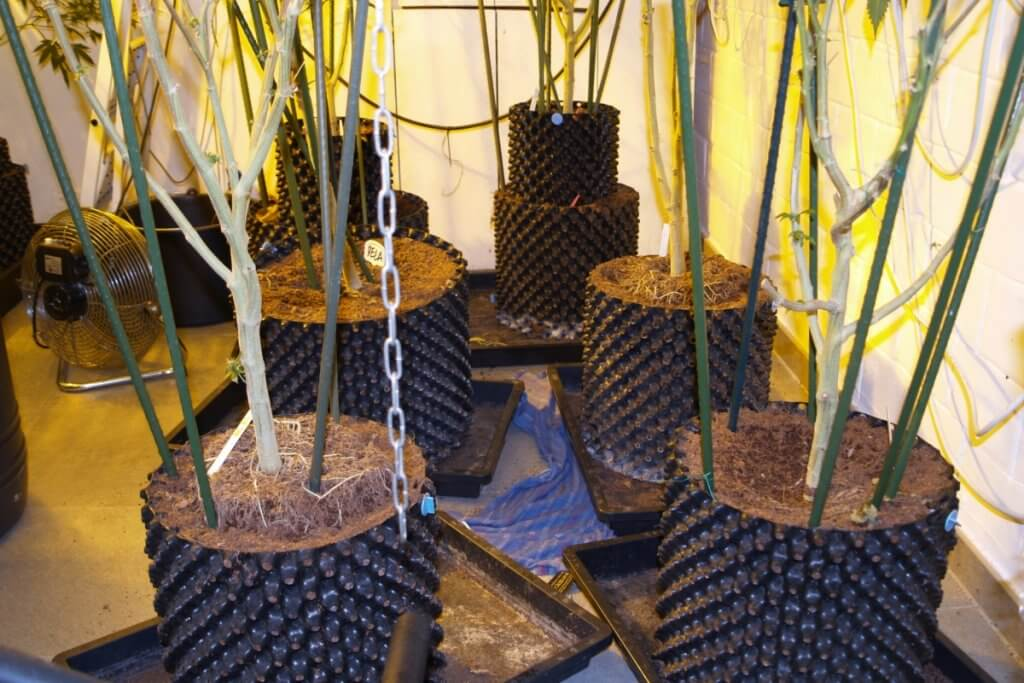 Austretendes Wasser könnte zu Growkammer Folgeschäden führen