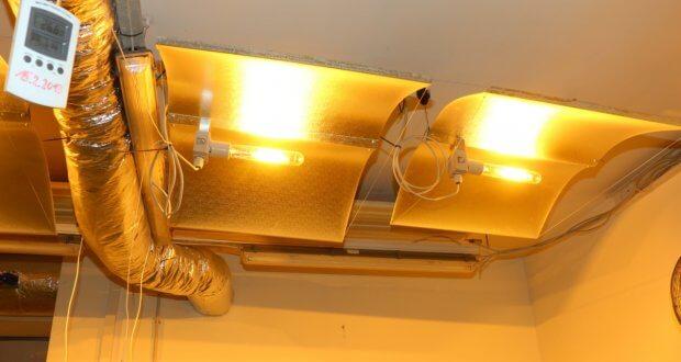 Welche Beleuchtung verwendet wird, sollte vor dem Kammerbau schon geplant werden