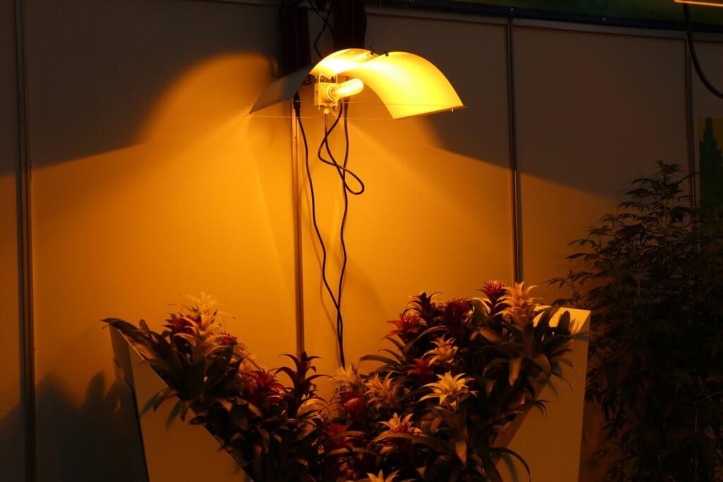 Die Growkammer Stromleitungen sollte man fest verlegen oder Kabelschlaufen an Haken hängen