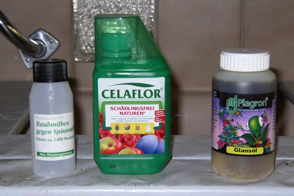 Raubmilben und Spritzmittel gegen Spinnmilben