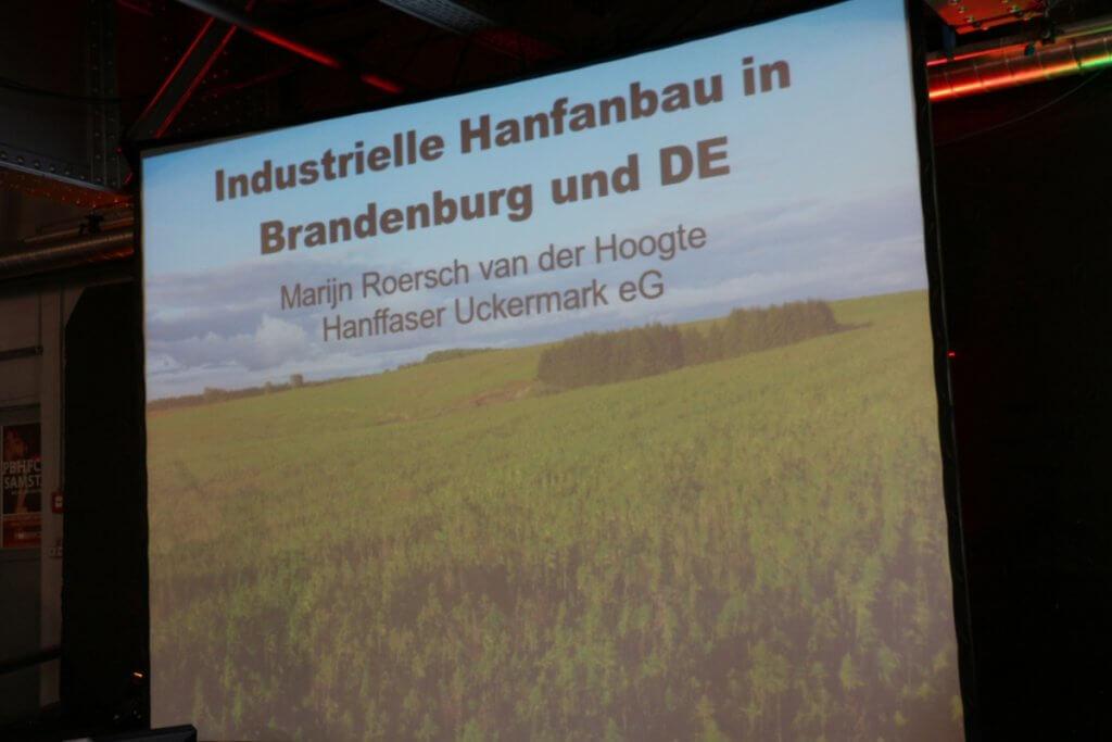 Noch keine Zweitfrucht Hanf in Brandenburg