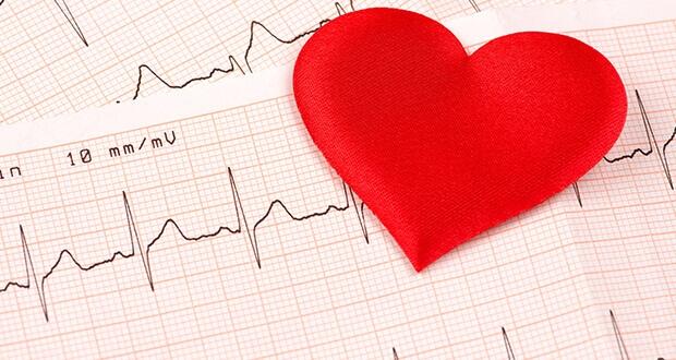 CBD - schützende Wirkung für das Herz-Kreislauf-System - CBD in der ...
