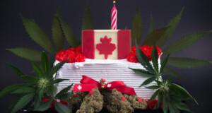 Seltsame Cannabis Gesetze in Kanadas Provinzen