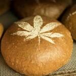 Hanfbrot - Kulturpflanze trifft Brotkultur