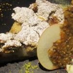 Proteinreicher Apfel-Walnusskuchen mit Hanfmehl und Hanfsamenpulver