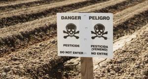 Sind Pestizide in Cannabis-Extrakten enthalten?